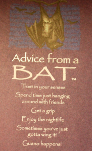 Advice_Bat